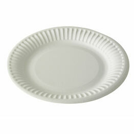 "9"" Paper Plates"