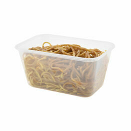 Satco 1000ml Heavy Duty Plastic Containers With Lids
