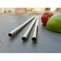 "Beaumont 8.5"" Stainless Steel Eco Friendly Straw"
