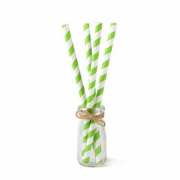 Green & White Paper Smoothie Straw 200mm x 8mm Bore