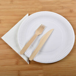 \'Eco Friendly\' Disposable Dinnerware Set - Standard